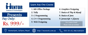 Computer training in nepal